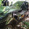 """Į medį rėžėsi """"CityBee"""" automobilis <span style=color:red;>(papildyta)</span>"""