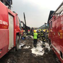 Katmandu sudužus Bangladešo laineriui žuvo 49 žmonės, sužeisti 22