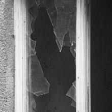 Marijampolėje siautė vagys: tarp pavogtų daiktų – viryklė ir butelis brendžio