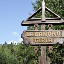 Labanoro giriai – nacionalinio parko statusas: plyni kirtimai būtų draudžiami