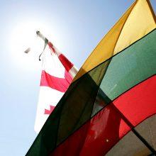 Premjeras Gruzijoje aptars, kaip stiprinti ekonominius saitus