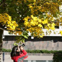 Orai: spalio dovana – fantastiškai šiltas ir gražus savaitgalis