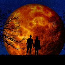 Dienos horoskopas 12 zodiako ženklų <span style=color:red;>(kovo 4 d.)</span>