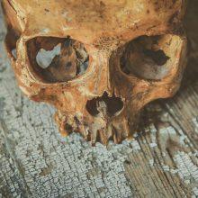Vilniuje sulaikytas jaunuolis su žmogaus kaukole