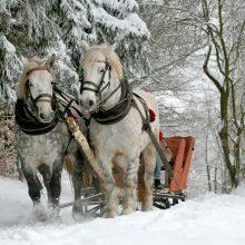 Orai: šiluma iš Lietuvos traukiasi