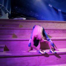 """Vienas seniausių Europoje videomeno festivalių sugrįžta į """"ArtVilnius"""""""