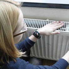Lengvatą šildymui Seimas pratęs tvirtindamas 2017 metų biudžetą