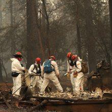 Per pražūtingą Kalifornijos gaisrą dingusių žmonių skaičius perkopė 1 000