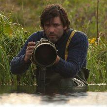 Gamtos fotografas: gyrimasis lavonais, kaip ir iškamšos namuose, – atgyvena
