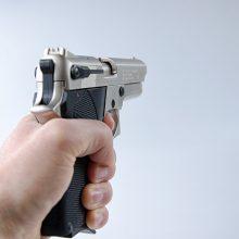 Mičigano universitete – šaudynės