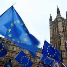 Bloko derybininkas: ES siūlo Didžiajai Britanijai beprecedentę partnerystę