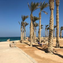 Žiemos atostogų metu lietuviai renkasi Egiptą: ką verta žinoti?