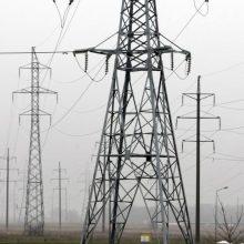 Parama elektros gamintojams viršijo 1,6 mlrd. eurų