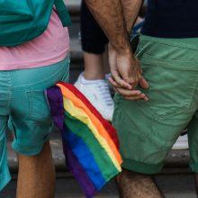 Taivane pristatytas homoseksualų santuokų įteisinimo projektas