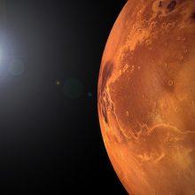 NASA nusiųs marsaeigį tyrinėti Raudonosios planetos senovinės upės deltos