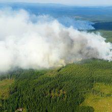 Rizika Švedijoje: baiminamasi dėl miškų gaisrų kilimo
