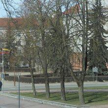 Rekonstruojant Šiaulių centrą planuojama nupjauti bemaž 250 medžių