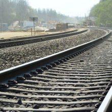 Kauno LEZ atsiras nauja geležinkelio linija