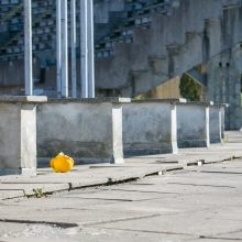 Renginiai pradėtame tvarkyti Kauno stadione užkliuvo Darbo inspekcijai