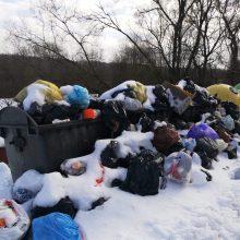 Gyventojai priversti kęsti smarvę: nuo gruodžio neišveža šiukšlių