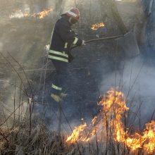 Gyvybė kenčia nuo gaisrų