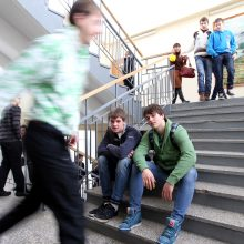 Nesutariant dėl sklypo mokyklai Vilniuje, klausimą svarstys Vyriausybė