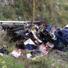 Kalifornijoje nukritus nedideliam lėktuvui žuvo penki žmonės