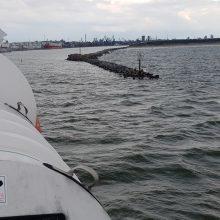 Siekia įteisinti žvejybą ir prie uosto vartų