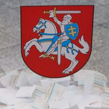 Dėl Marijampolės mero posto susirungs I. Lunskienė ir K. Traškevičius
