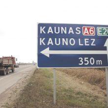 M. Katinas: šiemet užsienio investuotojai Lietuvoje plėsis