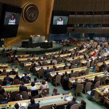 Lietuva susilaikė dėl JT rezoliucijos, smerkiančios Izraelį