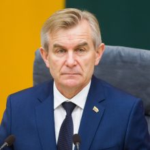 Seimo pirmininkas prakalbo apie VLKK sudarymo pokyčius