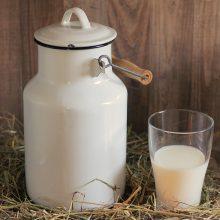 Per naktį pavogė 80 litrų pieno