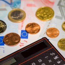 Ekonomikos apžvalga: 2019-ieji bus kuklesni, bet ne skurdesni