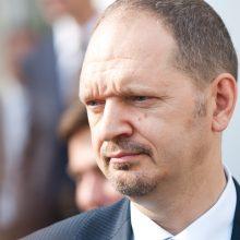 Lietuvos ambasadorius Gruzijoje įvardijo, kas labiausiai jungia abi šalis