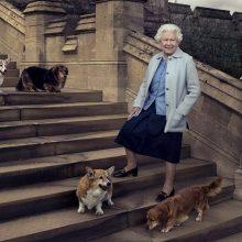 Didžiosios Britanijos karalienė neteko paskutinio korgių veislės šuns