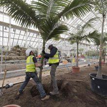 Londone po renovacijos atidaroma istorinė oranžerija su rečiausiais pasaulio augalais