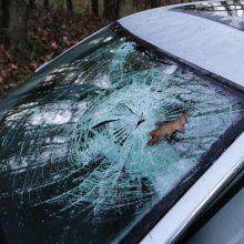 Avarija Kėdainių rajone: žuvo žmogus, dar trys sužeisti <span style=color:red;>(ribojamas eismas)</span>