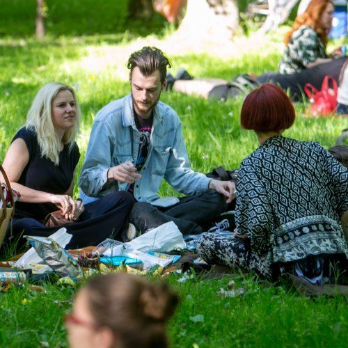 Piknikas Vytauto parke!  © Vilmanto Raupelio nuotr.