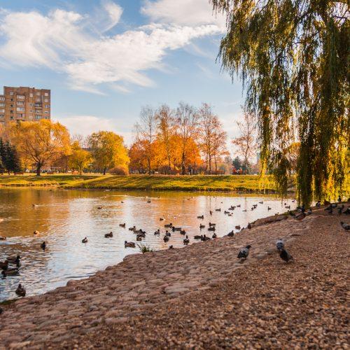 Rudenėjantis Kaunas  © Laimio Steponavičiaus nuotr.