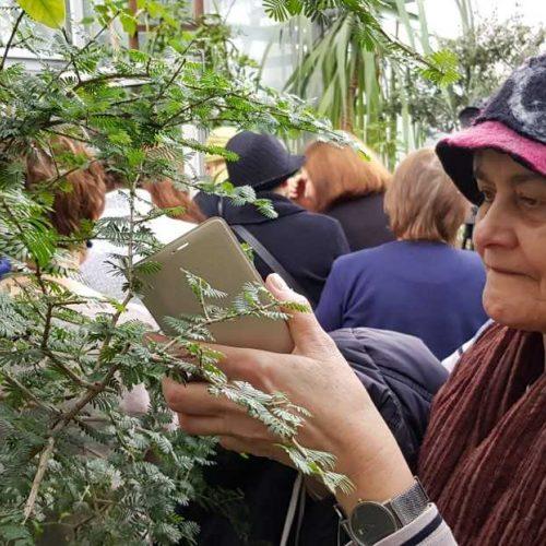 """Paroda """"Biblijos augalai""""   © Organizatorių nuotr."""
