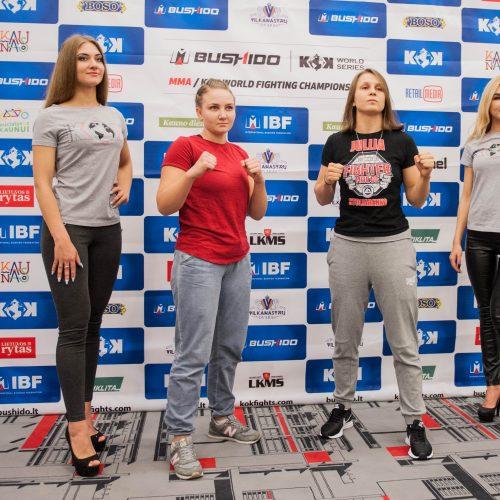 Tarptautinio bušido turnyro pristatymas  © Akvilės Snarskienės nuotr.