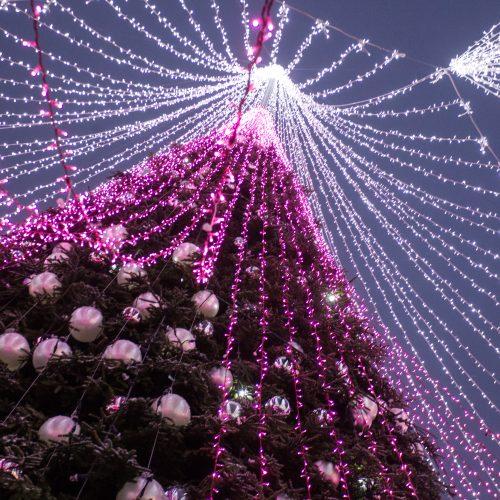 Sostinės Kalėdų miestelis  © V. Skaraičio, K. Vanago / BFL nuotr.