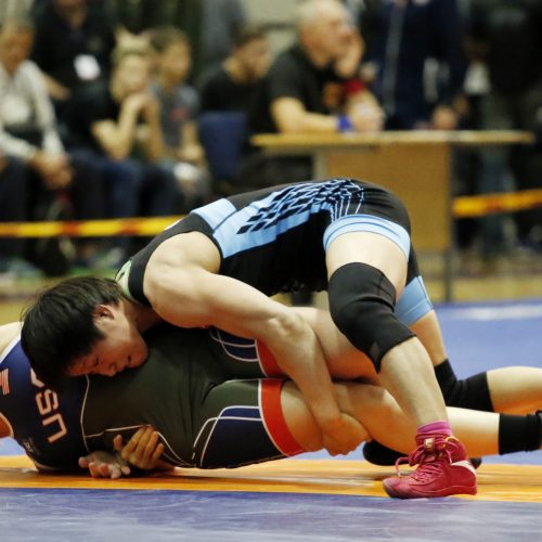 Pasaulio kareivių imtynių čempionatas  © Vytauto Petriko nuotr.