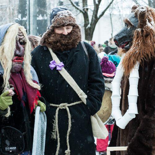 Vilniuje šurmuliavo Užgavėnių persirengėliai  © Dainiaus Labučio (ELTA) nuotr.