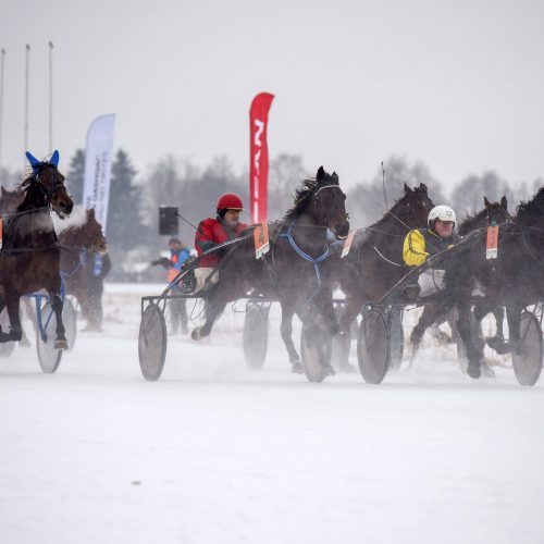 """Žirgų lenktynės ,,Sartai 2018"""""""