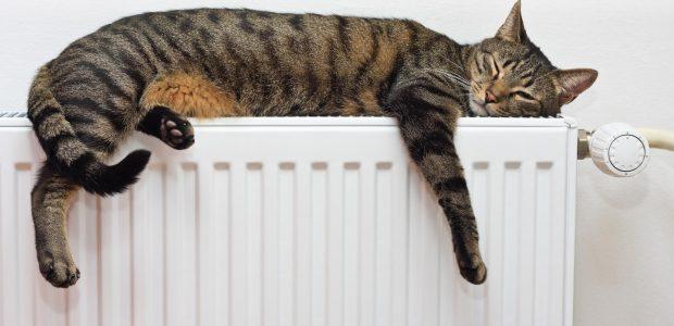 Lietuvoje populiarėja dujinis šildymas