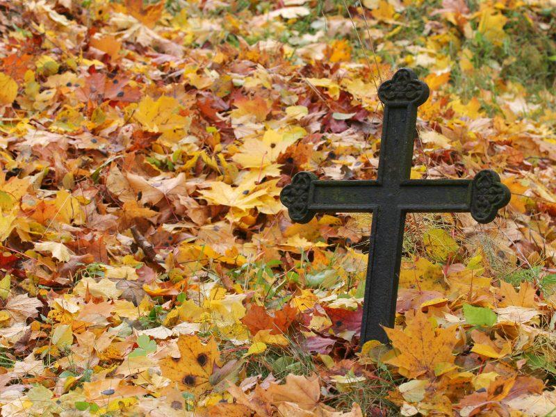 Šalčininkų rajone nupjautas kryžius