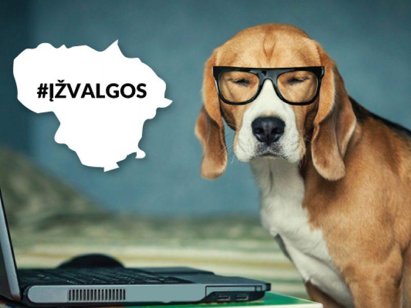 Kokias kriptovaliutas turi lietuviai ir ką už jas perka?