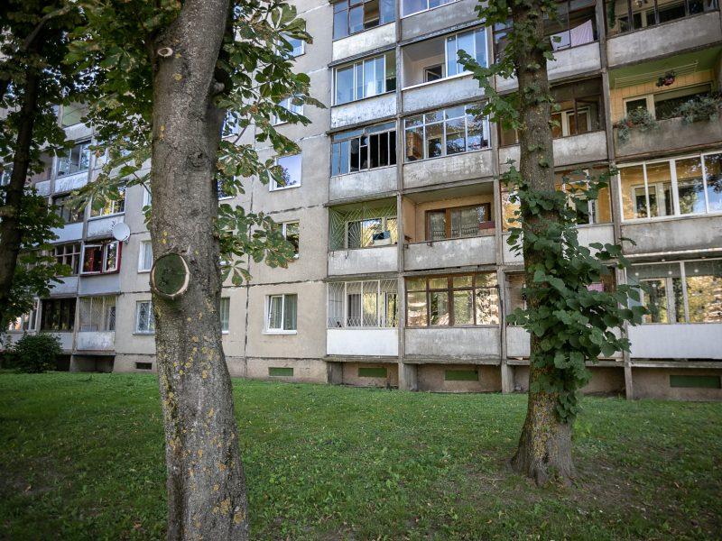 Atvykėliams iš Ukrainos – sprangi lietuviška duona